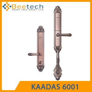KAADAS-6001